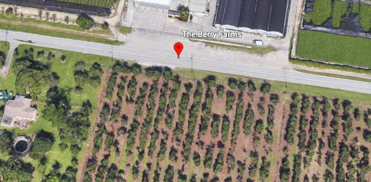 The Berry Farm has now changed locations not far from the original site.